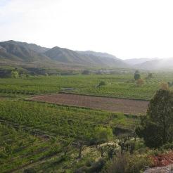 Huerta de Calanda