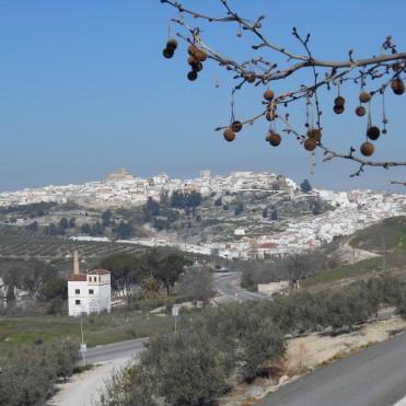 Vista de Baena desde el alojamiento de la delegación de Calanda - Foto de Carlos Palos