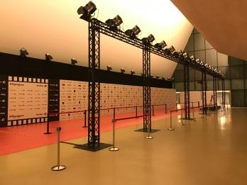 Alfombra roja Gala de los XXIV Premios Forqué (Zaragoza, 11/01/2019)